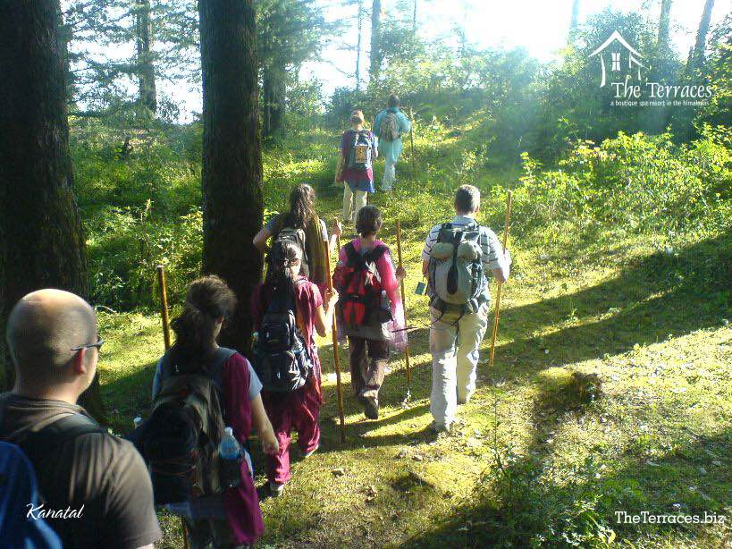 Terraces,kanatal,Uttarakhand,India,Resort,trekking,jeep safari,river side, mountains,greenery,nature,,kaudia