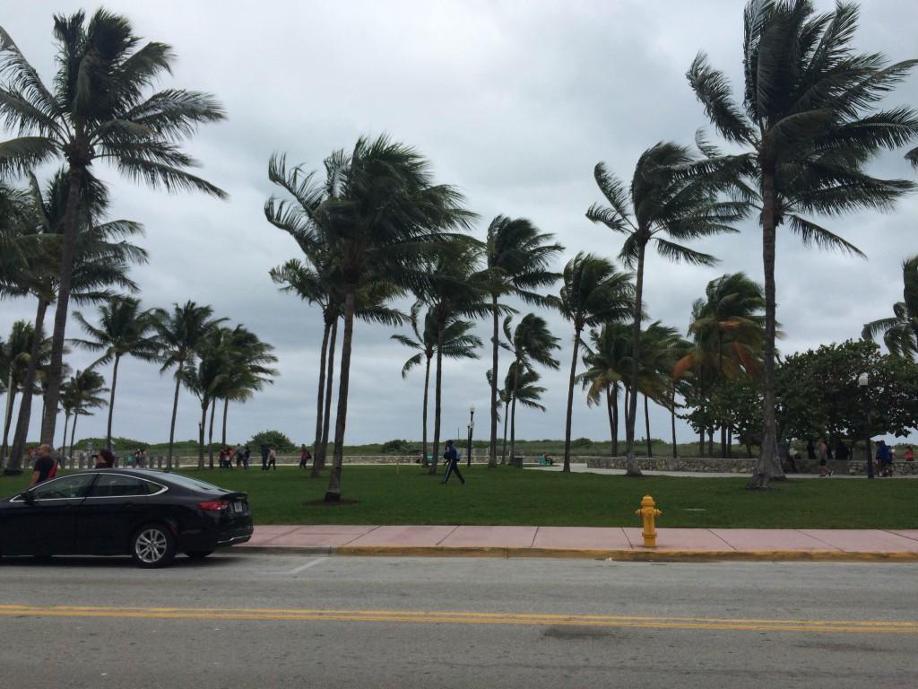 View from beachside restaurant