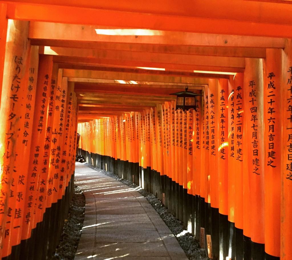 Fushima Inari Tashi,Kyoto,Japan,temple,tori