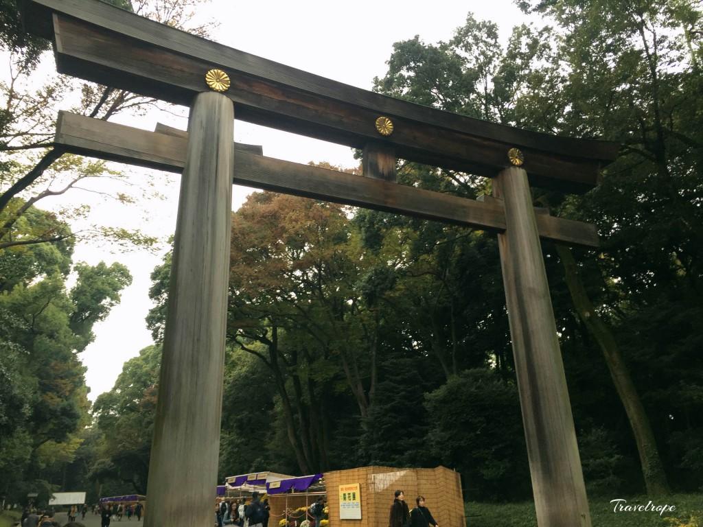 Meiji Jingu Shrine,Japan,tokyo,Shibuya