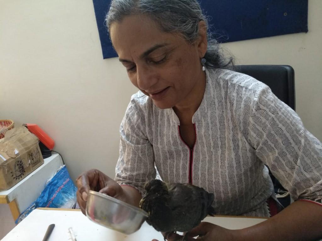 Inspire Me, Amar Chitra Katha, Tinkle, Reena Puri, travelrope